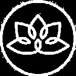 duhovnoe-razvitie-ico